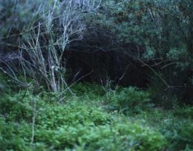 Cueva/ Cave I 100x130 I 2006