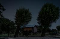 Nocturno / 55x81 / 2016